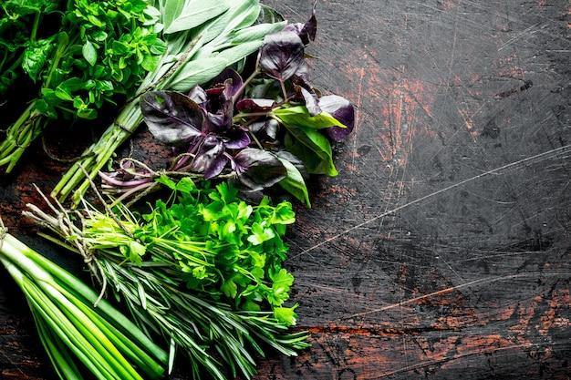Cibo salutare. una varietà di erbe fresche. su fondo rustico scuro