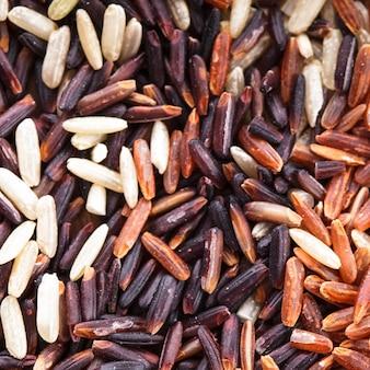 Varietà di riso sparso sano: marrone, rosso e nero selvatico