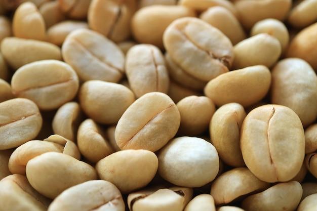 Mucchio di chicchi di caffè crudo prima del processo di tostatura
