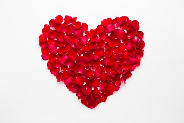 Cuore di rose su fondo bianco. biglietto di auguri di san valentino.