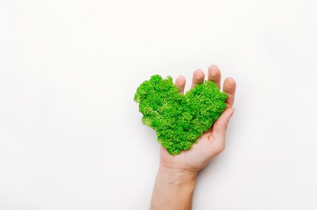 Muschio stabilizzato a forma di cuore in una mano su sfondo bianco con uno spazio vuoto per il testo