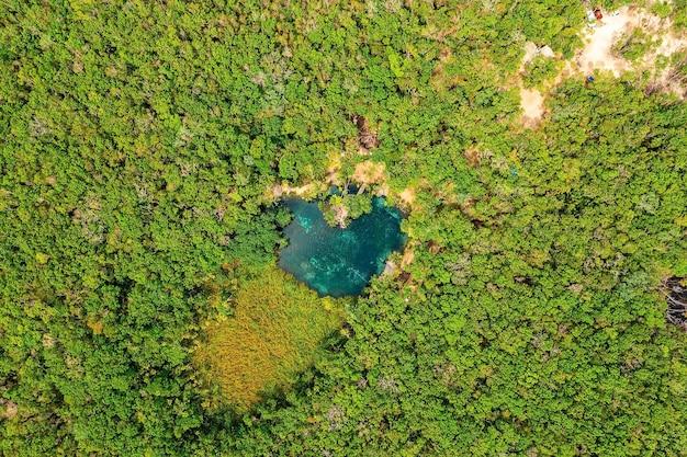 Cenote a forma di cuore nel mezzo di una giungla a tulum in messico