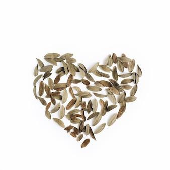 Simbolo del cuore fatto di foglie secche su bianco
