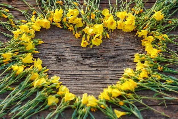 Il cuore dei fiori gialli su fondo, su amore e sul concetto romanzeschi di legno, copia lo spazio
