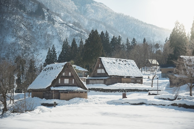 Forti nevicate in alberi, case e sentieri coperti d'inverno estremo