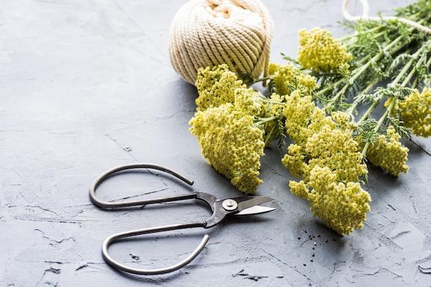 Mazzo di helichrysum arenarium
