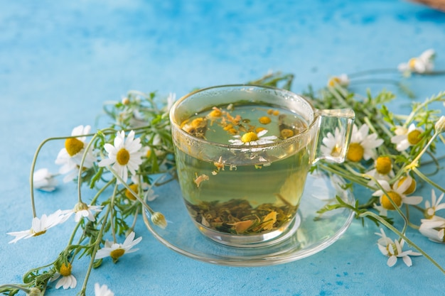 Tisana alle erbe e fiori di camomilla su sfondo blu con texture