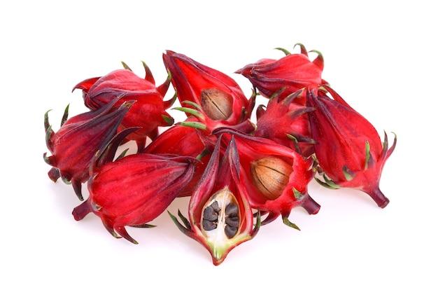 Hibiscus sabdariffa o frutti di roselle isolati