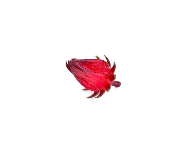 Hibiscus sabdariffa o frutti di roselle