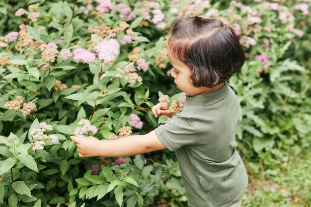 Ritratto ad alto angolo di una bambina carina che guarda i fiori nel parco, copia spazio