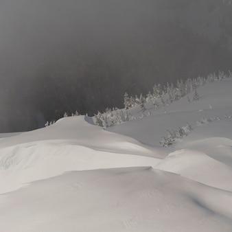 Vista dell'angolo alto di una valle coperta di nebbia, whistler, columbia britannica, canada