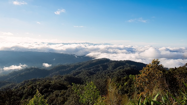 Alta montagna in mattinata. bellissimo paesaggio naturale