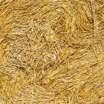 Alta risoluzione di balle di paglia di consistenza del grano. texture per la modellazione 3d. concetto di agricoltore ... tavolo