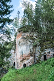 Alta roccia arenaria nella foresta