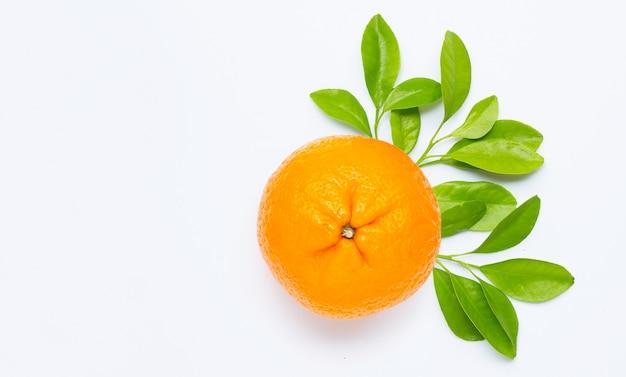 Alta vitamina c, succosa e dolce. frutta arancione fresca con foglie verdi su uno spazio bianco