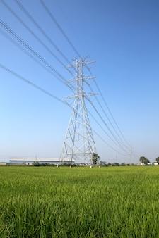 Torre di trasmissione ad alta tensione e cavo di cablaggio.