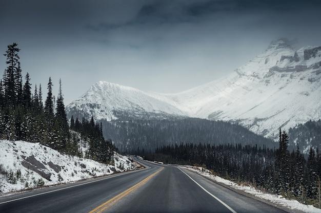 Strada della strada principale con la montagna della neve in cupo alla strada panoramica di icefields
