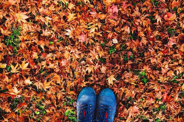 Stivali di escursionisti sulle foglie d'autunno. primo piano della donna che cammina in scarpe da trekking blu.