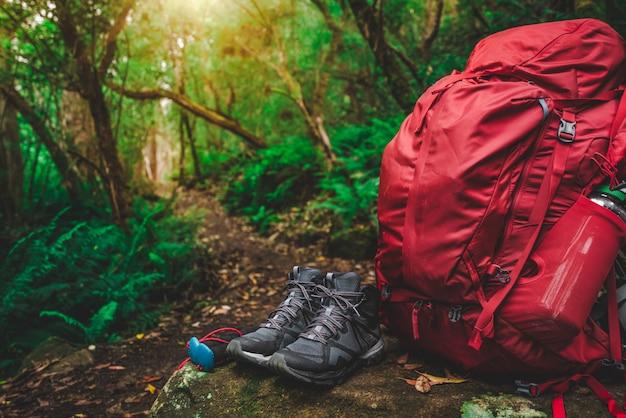 Set di attrezzi da trekking nella giungla della tasmania, australia.