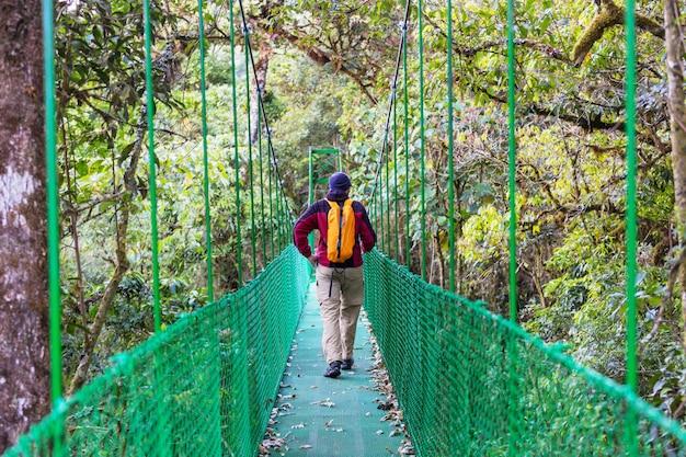 Facendo un'escursione nella giungla tropicale verde, costa rica, america centrale