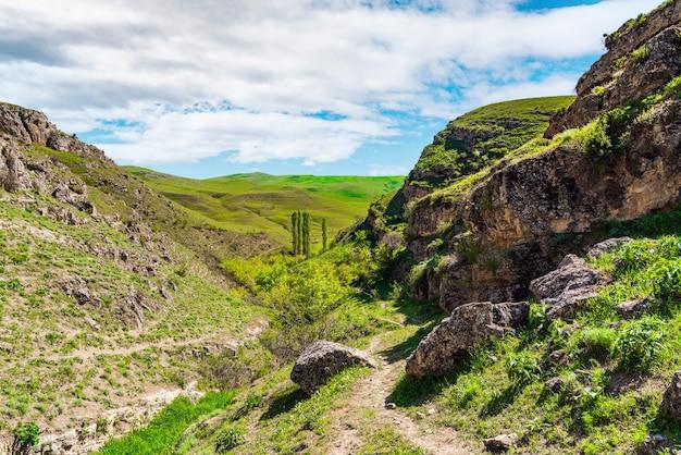 Sentiero escursionistico in un canyon di montagna