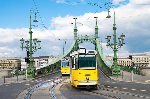 Tram storici sul ponte della libertà a budapest, ungheria