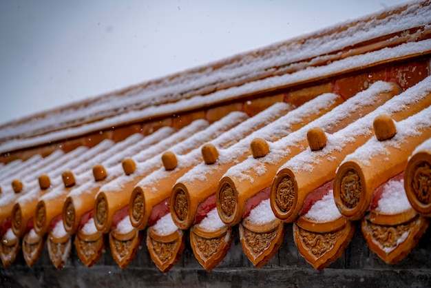 Edificio storico coperto di neve