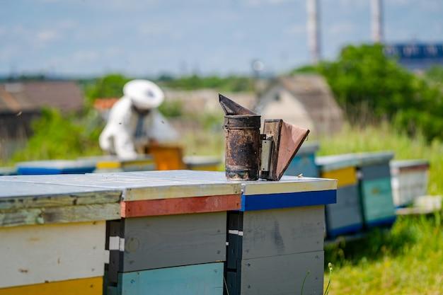 Alveari in un apiario con api che volano verso le tavole di atterraggio. apicoltura. fumatore di api sull'alveare. apicoltore su sfondo sfocato.