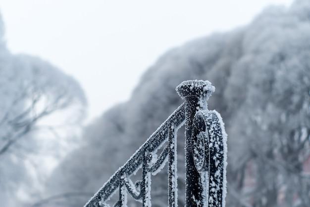 Brina sulla ringhiera di metallo nel parco quando fa freddo su uno sfondo di alberi gelidi