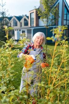 Passatempo. vecchia bella signora che si sente felice mentre parla di cura di piante e fiori
