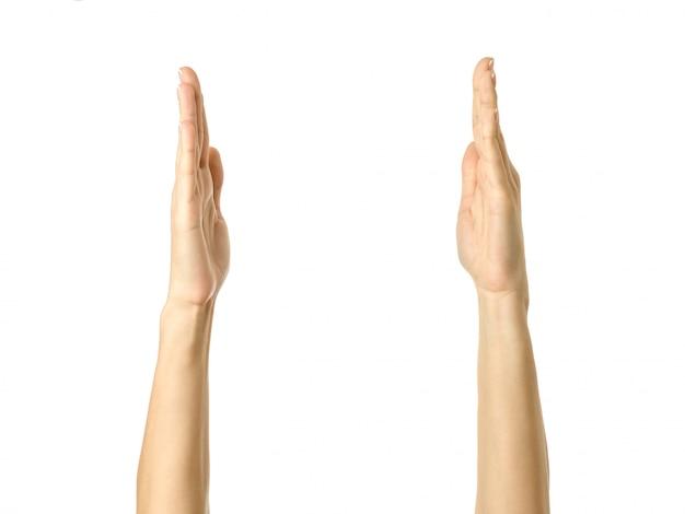 Tenendo o misurando le mani. gesturing della mano della donna isolato su bianco