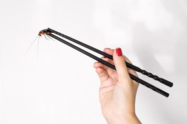 Tiene uno scarafaggio con le bacchette cinesi. insetti come cibo. concetto di cibo strano esotico.