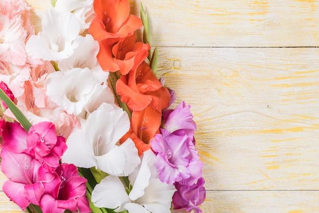 Superficie della natura di vacanza con bellissimi fiori, bordo floreale, disegno floreale
