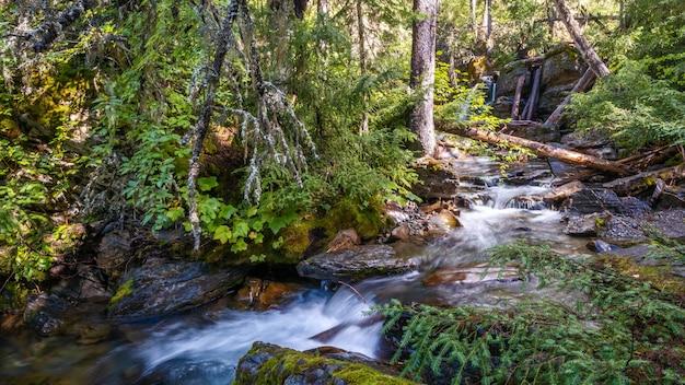 Holland creek in una soleggiata giornata autunnale