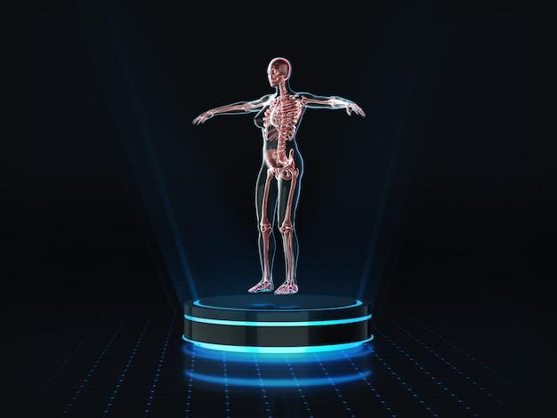 Ologramma di anatomia femminile e scheletro su piedistallo