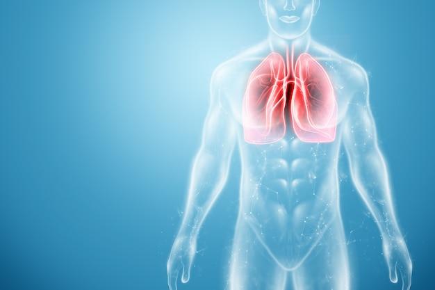 Ologramma di polmoni infiammati nel corpo umano