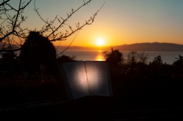 Sacra bibbia aperta con luce direzionale
