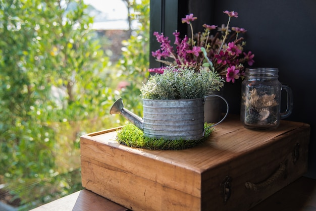 Pianta della decorazione domestica in vaso, decorazione domestica d'annata