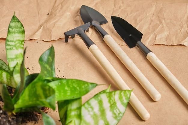 Strumenti domestici per fiori e floricoltura su pala, rastrello, cucchiaio, utensile in metallo con manico in legno su sfondo di carta kraft