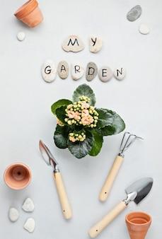 Concetto di giardinaggio domestico. lay piatto con il testo il mio giardino su pietre e attrezzi da giardinaggio. composizione minima vista dall'alto