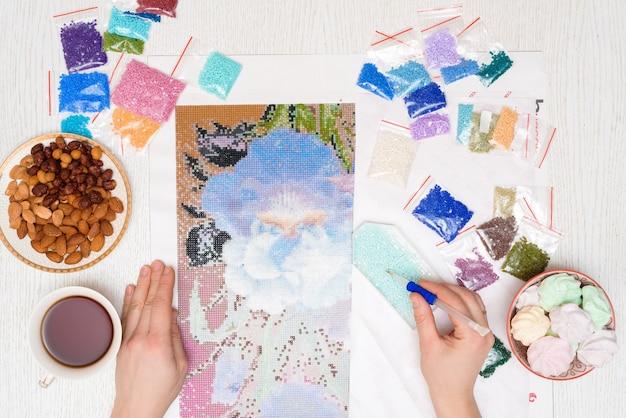 Hobby domestico per disegnare un'immagine di strass, mosaico di diamanti multicolori.