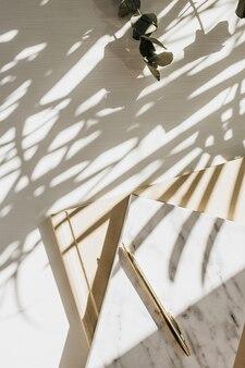 Area di lavoro del ministero degli interni con il taccuino, l'eucalipto e la candela su bianco con l'ombra della pianta