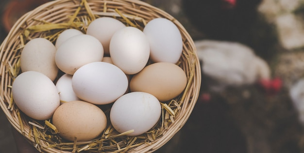Uova di gallina fatte in casa in un cestino