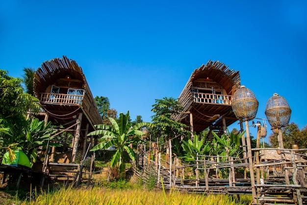 Famiglia di bambù nella foresta casa fatta di bambù a chiang dao chiangmai thailandmai