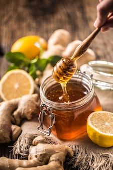 Miele vasetto merlo acquaiolo zenzero limone e menta erbe sulla tavola di legno.