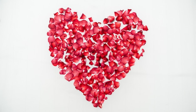 Luna di miele o anniversario di matrimonio, letto sormontato da una rosa a forma di cuore su un lenzuolo bianco.