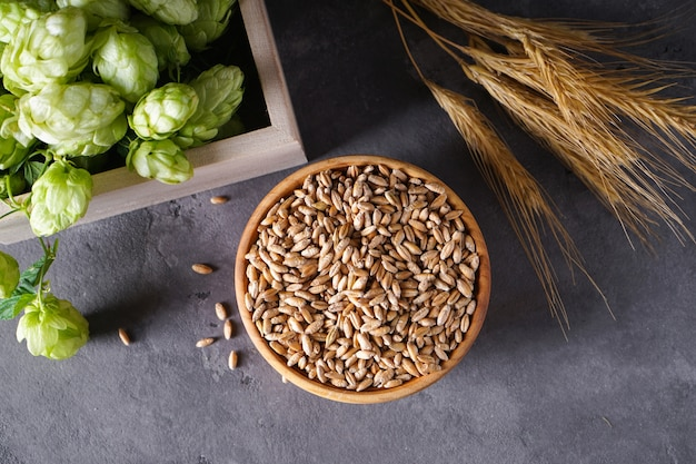 Luppolo e rami di grano su uno spazio grigio, vista dall'alto.