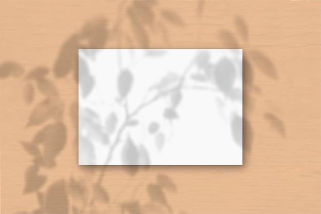 Un foglio a4 orizzontale di carta ruvida bianca sullo sfondo della parete color pesca. sovrapposizione di mockup con le ombre delle piante. la luce naturale proietta le ombre di una pianta esotica. disposizione piana, vista dall'alto. orizzontale