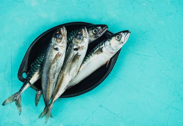 Sugarello e sgombro quattro pesce fresco su un piatto nero su sfondo blu. copia spazio.