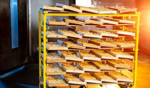 Cottura calda dal forno. produzione industriale di pane.